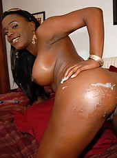 Hot chocolate ass milan gets her smooth ass pounded hard in these amazing pussy penetrating pics