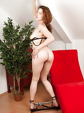 Slender hirsute lady Yvette sensually strips on the red sofa, all the way down to her creamy thighs and thick, dark, and curly hairy pussy.