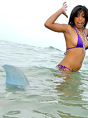 Hot little bikini latina gets picked up by a dude wearing a shark fin in the water in these hot shark attack wet fucking vids and pics