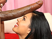 Bitch gets it doggy nasty style with a 14 inch cock!