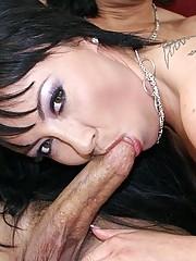 Nasty Brunette Swallows A Cum Mouthful