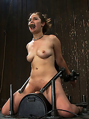 Charlotte Vail suffers though a live Device Bondage shoot. Bound on a Sybian, zippered, and sucking cock! All while cumming!