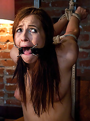 Ashli manhandled and ass fucked in hard bondage.