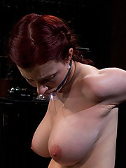 19-year-old Iona Grace metal bound to the Sybian, arms chained in strappado, cums until it hurts, then some.