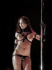Katsuni signs DVDs and pole dances at a private party