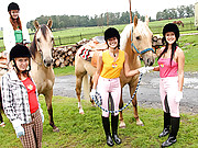 Four lesbian girls riding horses and kissing
