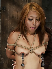 Hot Japanese girl bound in traditional Japanese tie. Sexy Japanese girls really do sound just like Japanese anime when they cum. Japanese.