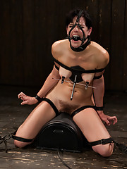 Bobbi Starr returns to Device. She is ass fucked, ass gaped and tormented by the sybian. Her only relief is to endure the cane and whip.