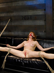 Local girl is fist fucked and fucked in suspension bondage by Isis Love.