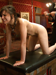 When she starts to enjoy it too much pixie is thrown on the floor and made to service katt with her greedy mouth.