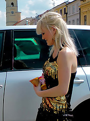 Cute hot car washing hotties playing together