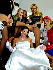 A big group of lesbian porn stars caressing