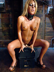 Hot, tanned, big titted blonde girl, fucked with machines until every last orgasm is pulled from her pussy & clit. She rides the Sybian to exhaustion.