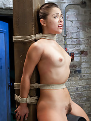 Kristina cries from intense pleasure cumming over and over in a strict hogtie, tickle tormented, gets a panty crotch rope, and rides the sybian.