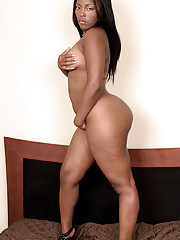 Ebony Amateurs