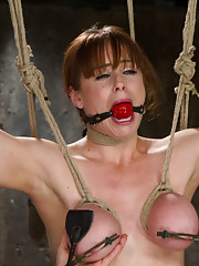 Brunette big breasted bimbo endures heavy breast bondage predicaments, vicious back arch suspension, and innumerable orgasms!