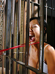 Hot asian babe gets tied up and dominated by Bobbi Starr